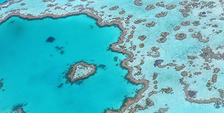 The Great Barrier Reef (Pixabay)