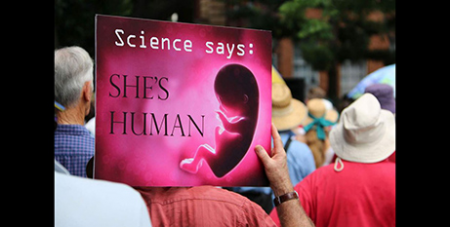 The laws would see protestors banned within 150m of abortion clinics (ABC News)