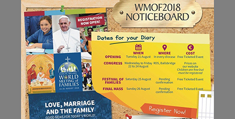The World Meeting of Families will be in Dublin next month (Vatican Media)