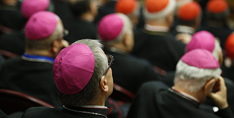 Pope Francis will meet with the bishops conference presidents in February (CNS/Paul Haring)