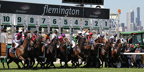 All eyes will be on the Melbourne Cup and not CathNews tomorrow (Bigstock)