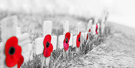 Remembrance Day 2018 marked 100 years since the end of World War 1 (Bigstock)