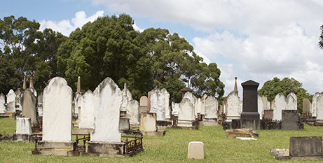 A Catholic trust manages a third of Sydney's Rookwood Cemetery (Bigstock)