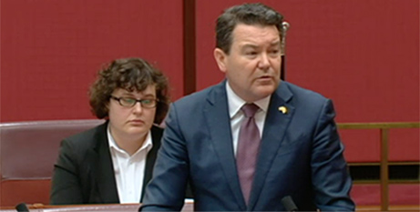 Dean Smith speaks to his bill in the Senate yesterday (ABC News)