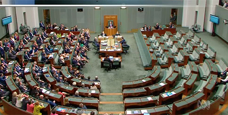 The division on the final vote in parliament yesterday (ABC News)