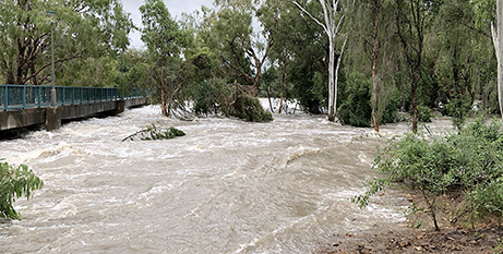 Flooding in Black Weir, Townsville in February 2019 (Neil Helmore)