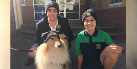 Therapy dog Ivee and Parade College students Alessandro Mellino (left) and Myles Adlard wear the fundraising beanies (Supplied)
