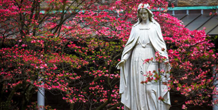 It will be the third time the US bishops have consecrated their nation to Mary (CNS/Chaz Muth)