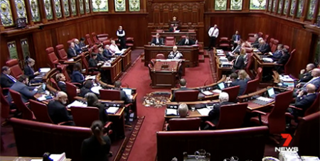Upper House president Kate Doust says she hopes the debate will be respectful (7News)